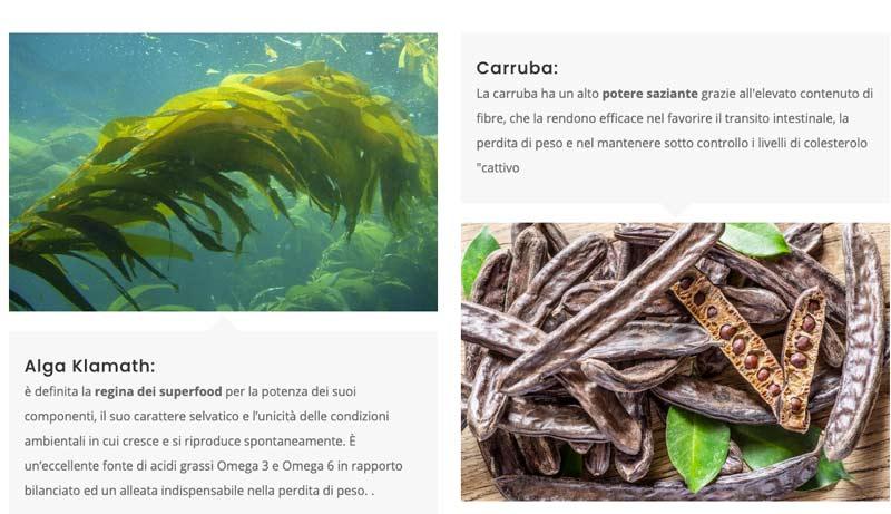 Ingredienti di Alga Klamath Super Fit